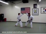 3 Step Sparring (Sam Soo Sik) Series #1 - #10 & Five Drills