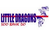 Dragons Level 4 (Red Stripe)