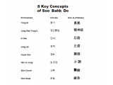 Eight Key Concepts of Soo Bahk Do