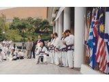 50th Anniversary Moo Duk Kwan 1995