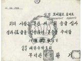 Original Green Belt Gup Certificate