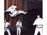 Teik Mullin Jump Split Kick