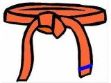 7th Orange Belt