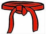 Red Belt 3rd Gup