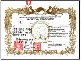 Official Soo Bahk Do Gup Rank Certificate