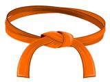 Orange Belt Students